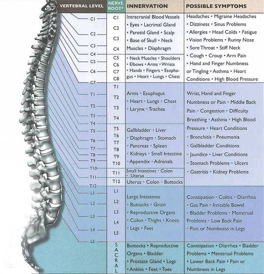Spine Affected