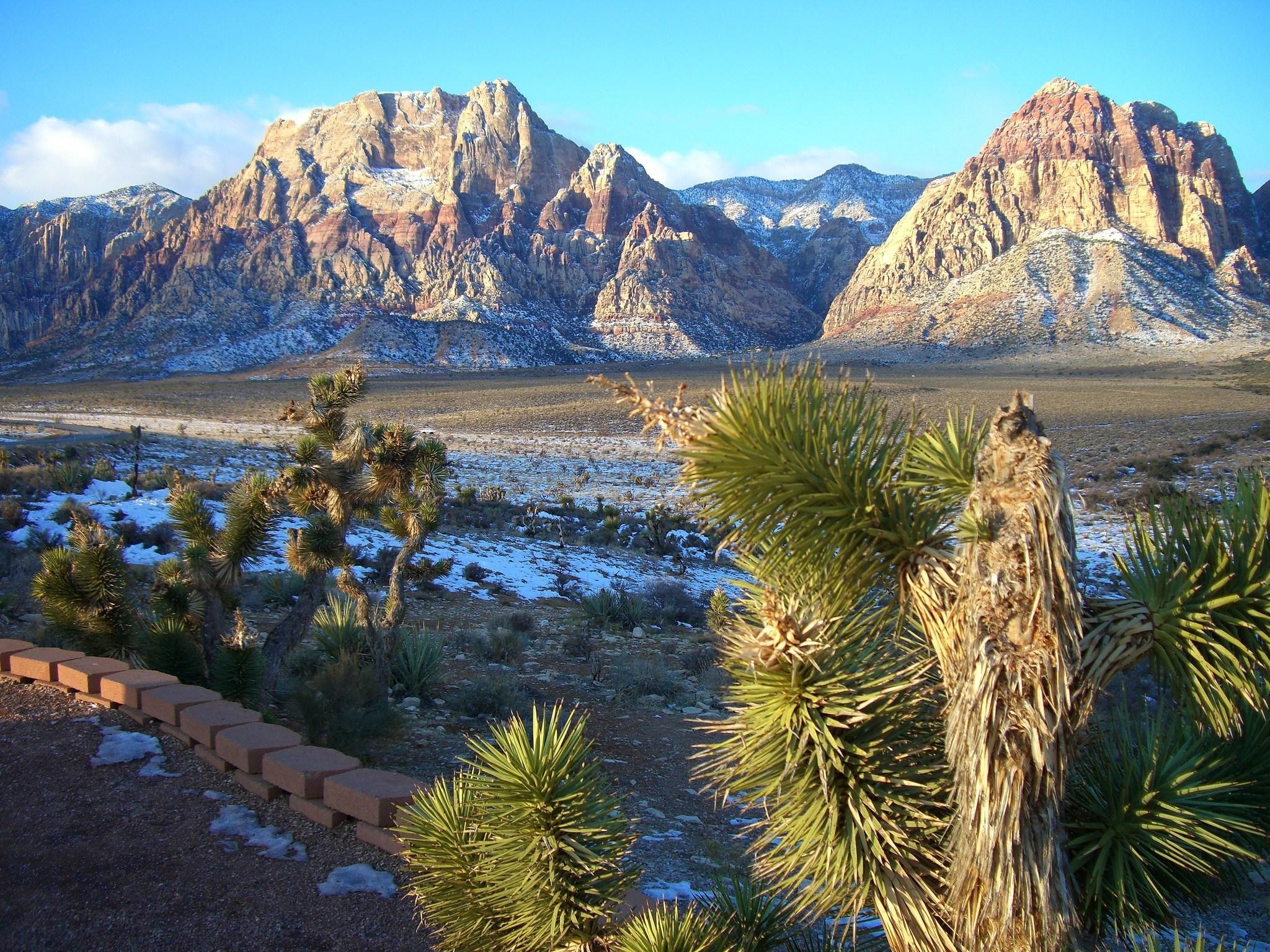 Nevada February