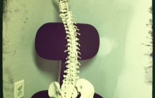 Which Chiropractic Methods Are Used To Treat Low Back Pain?   NevadaPain.com